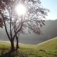 Talsperre Mandelholz Sonnenaufgang